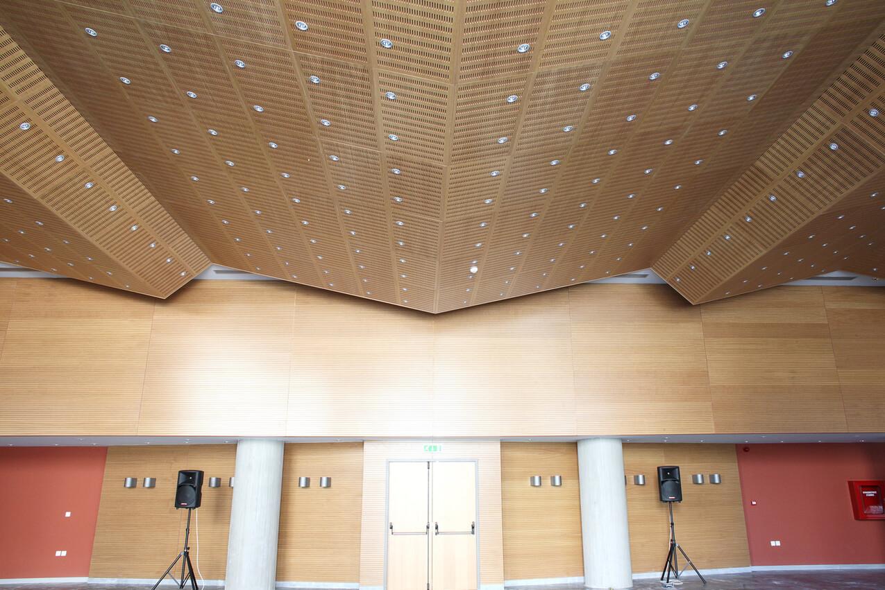 Paneles acústicos para el techo: Diseño y confort acústico